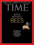 bee-cover-0813